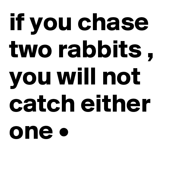 if you chase two rabbits , you will not catch either one •