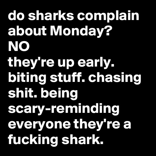 do sharks complain about Monday? NO they're up early. biting stuff. chasing shit. being scary-reminding everyone they're a fucking shark.