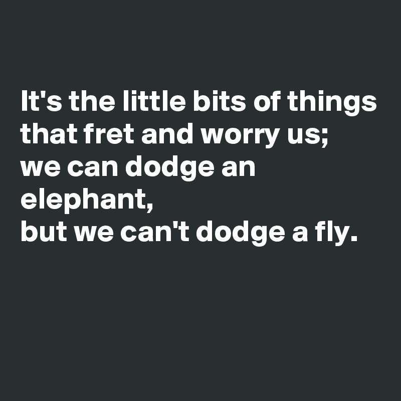 It's the little bits of things that fret and worry us; we can dodge an elephant,  but we can't dodge a fly.