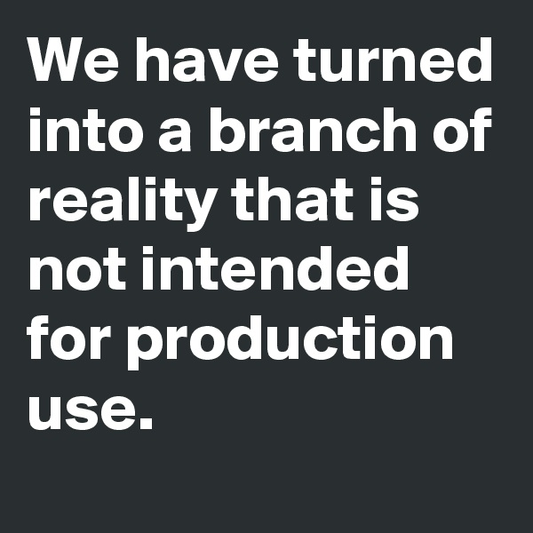 We have turned into a branch of reality that is not intended for production use.