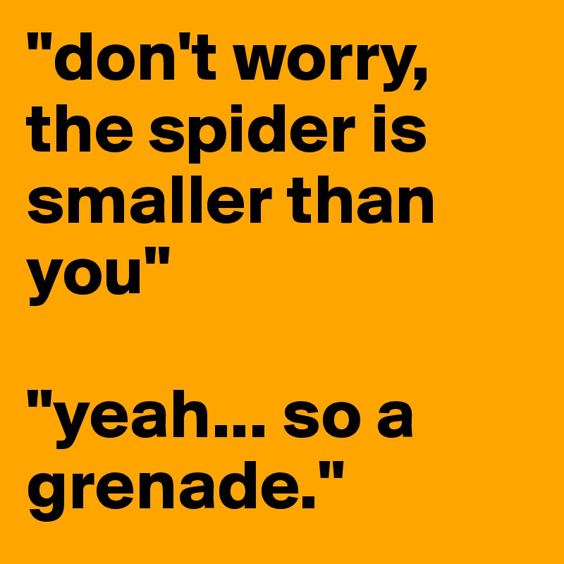 """""""don't worry, the spider is smaller than you""""  """"yeah... so a grenade."""""""