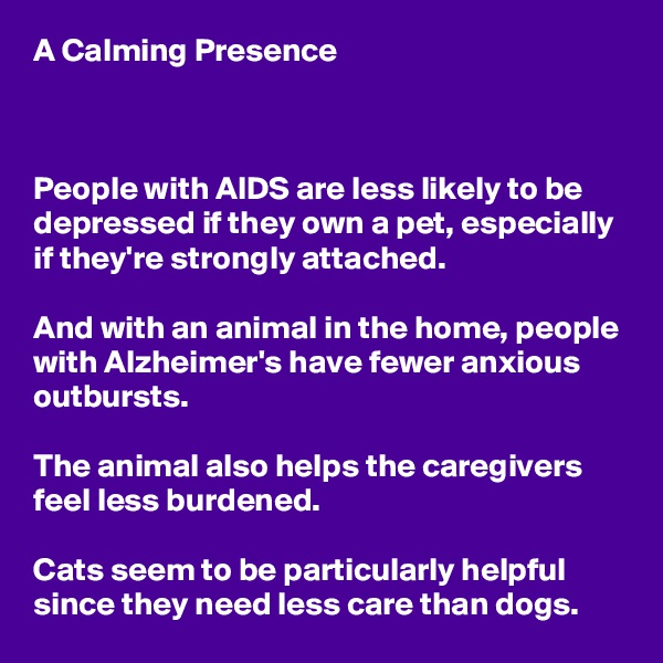 A Calming Presence    People with AIDS are less likely to be depressed if they own a pet, especially if they're strongly attached.  And with an animal in the home, people with Alzheimer's have fewer anxious outbursts.  The animal also helps the caregivers feel less burdened.  Cats seem to be particularly helpful since they need less care than dogs.