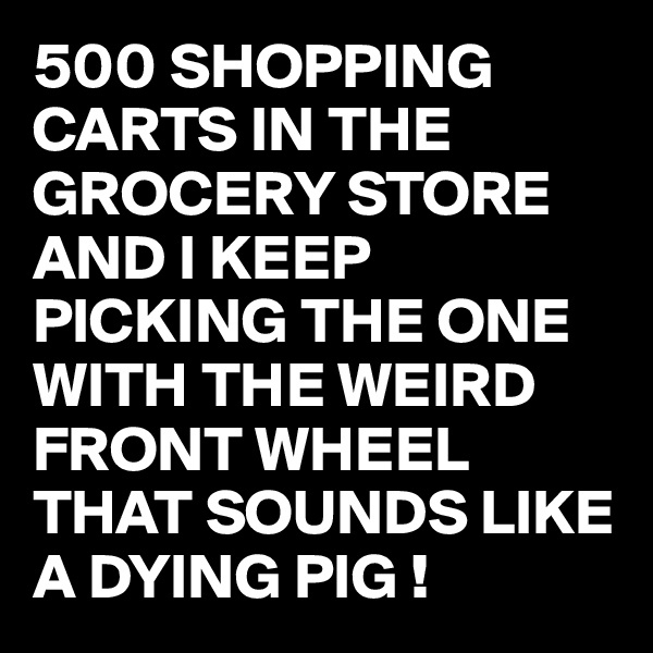 500 SHOPPING CARTS IN THE GROCERY STORE AND I KEEP PICKING THE ONE WITH THE WEIRD FRONT WHEEL THAT SOUNDS LIKE A DYING PIG !