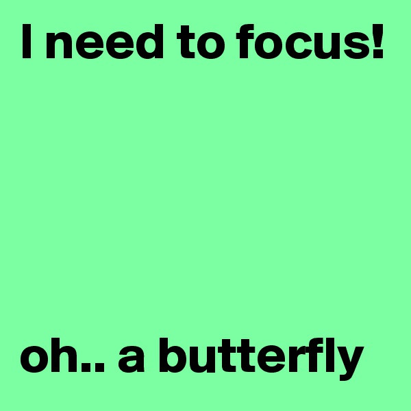 I need to focus!       oh.. a butterfly