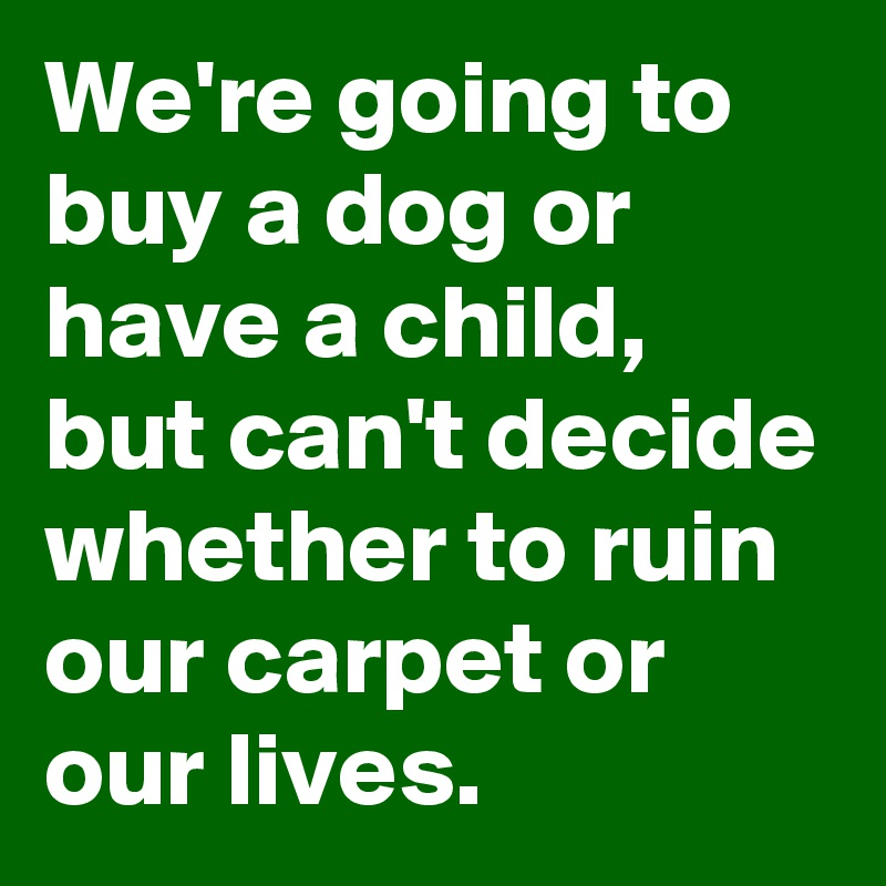 We're going to buy a dog or have a child, but can't decide whether to ruin our carpet or our lives.