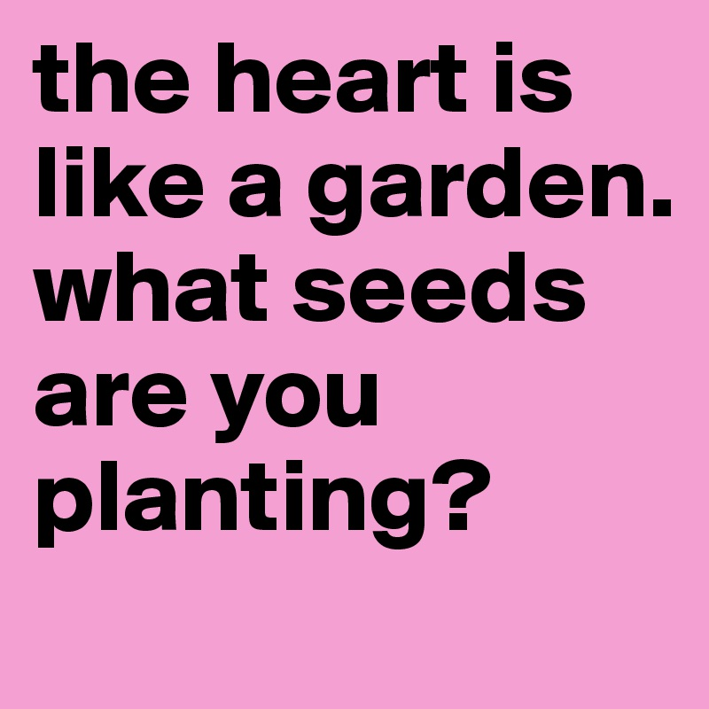 the heart is like a garden. what seeds are you planting?