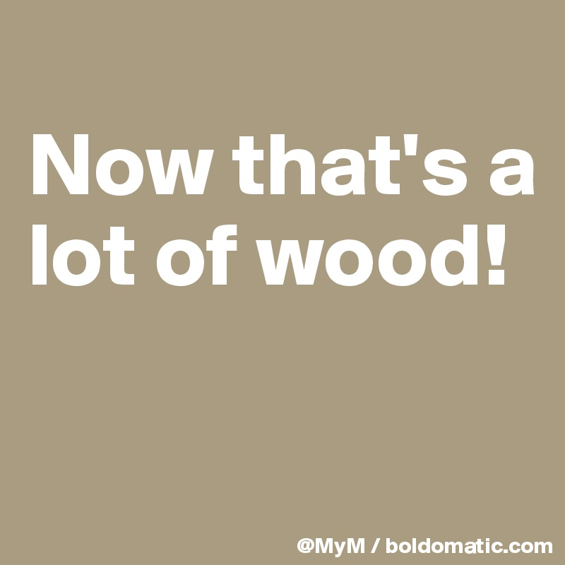 Now that's a lot of wood!