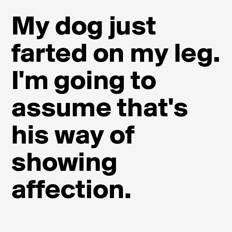 My dog just farted on my leg.  I'm going to assume that's his way of showing affection.