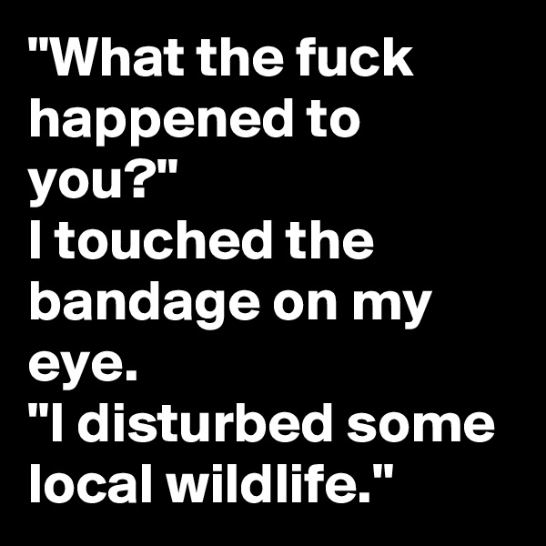 """""""What the fuck happened to you?""""  I touched the bandage on my eye.  """"I disturbed some local wildlife."""""""