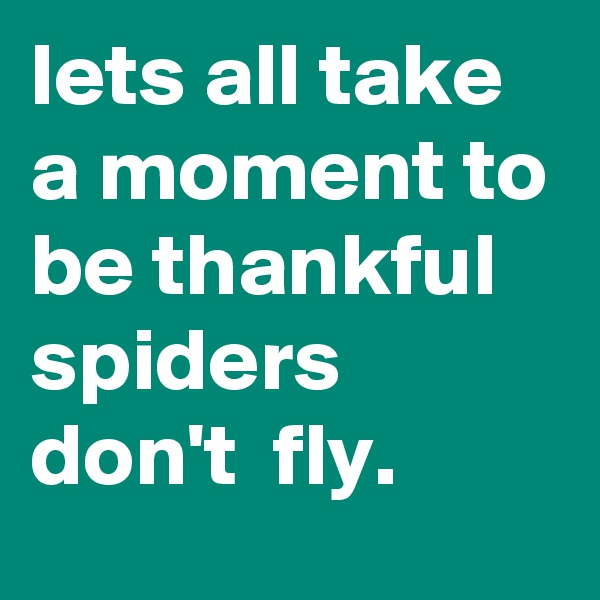 lets all take a moment to be thankful spiders don't  fly.