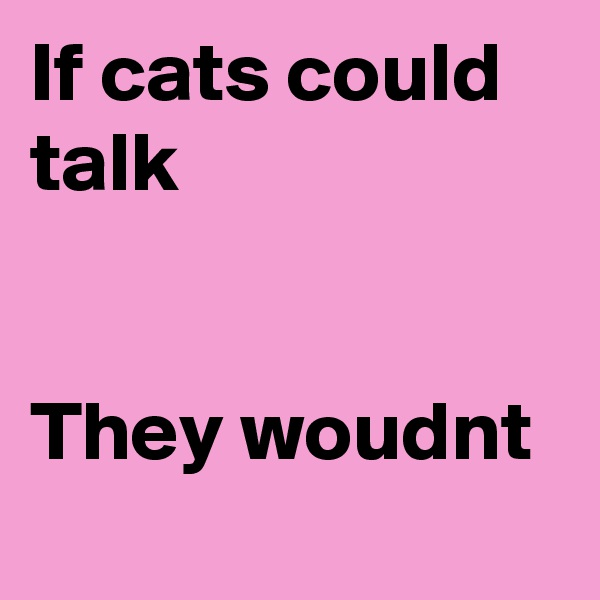 If cats could talk   They woudnt