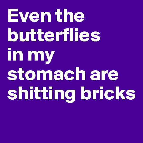 Even the butterflies  in my  stomach are  shitting bricks