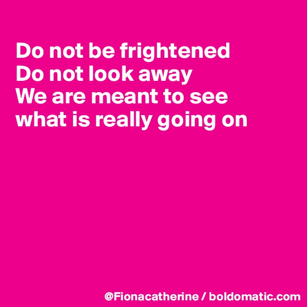 Do not be frightened Do not look away We are meant to see what is really going on