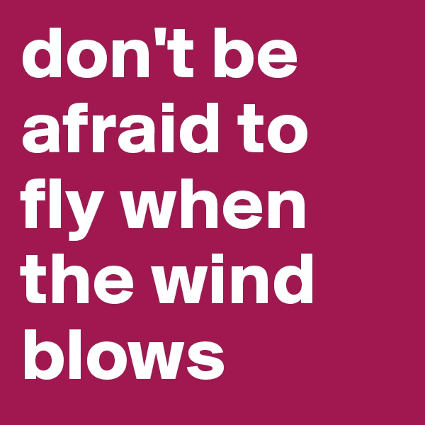 don't be afraid to fly when the wind blows
