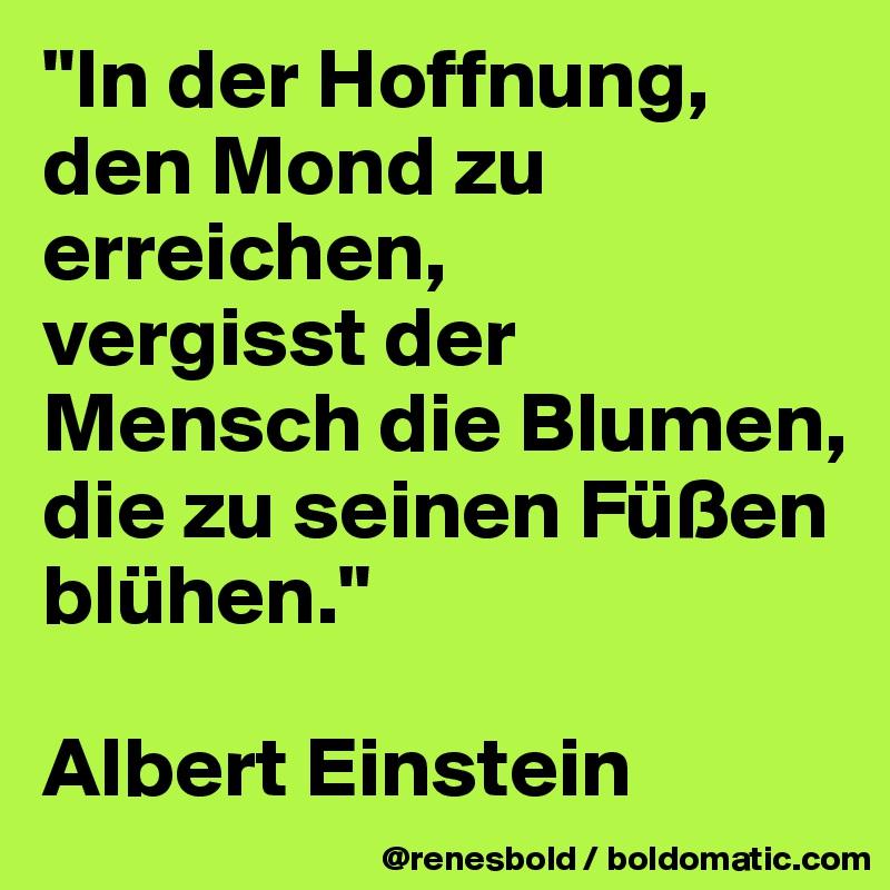 """""""In der Hoffnung,  den Mond zu erreichen, vergisst der Mensch die Blumen, die zu seinen Füßen blühen.""""  Albert Einstein"""