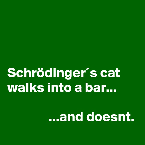 Schrödinger´s cat walks into a bar...                 ...and doesnt.
