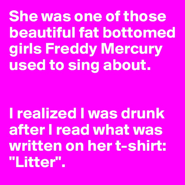 """She was one of those beautiful fat bottomed girls Freddy Mercury used to sing about.    I realized I was drunk after I read what was written on her t-shirt: """"Litter""""."""