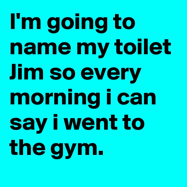 I'm going to name my toilet Jim so every morning i can say i went to the gym.