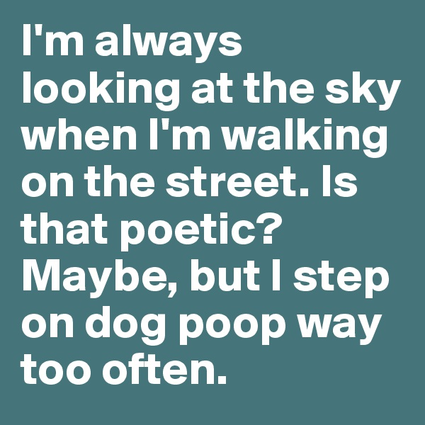 I'm always looking at the sky when I'm walking on the street. Is that poetic? Maybe, but I step on dog poop way too often.