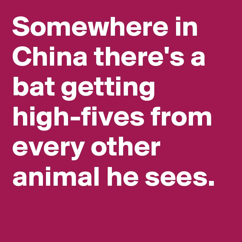 Somewhere in China there's a bat getting high-fives from every other animal he sees.