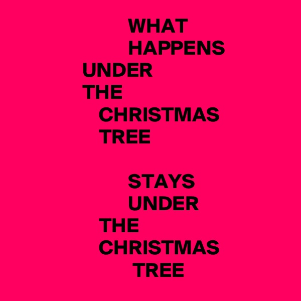 WHAT                            HAPPENS                 UNDER                 THE                     CHRISTMAS                     TREE                             STAYS                            UNDER                     THE                     CHRISTMAS                             TREE