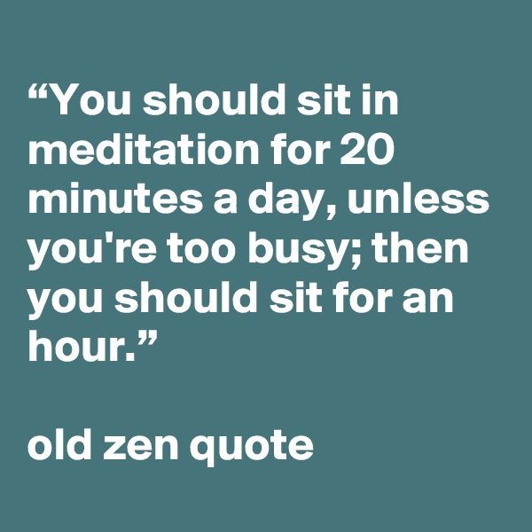 """""""You should sit in meditation for 20 minutes a day, unless you're too busy; then you should sit for an hour.""""  old zen quote"""