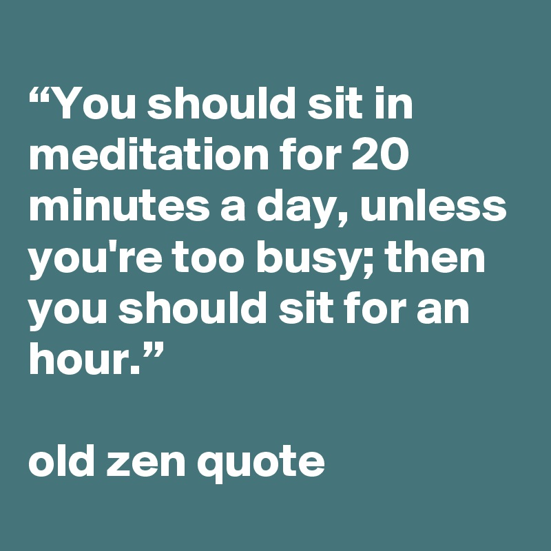 """You should sit in meditation for 20 minutes a day, unless you're too busy; then you should sit for an hour.""  old zen quote"