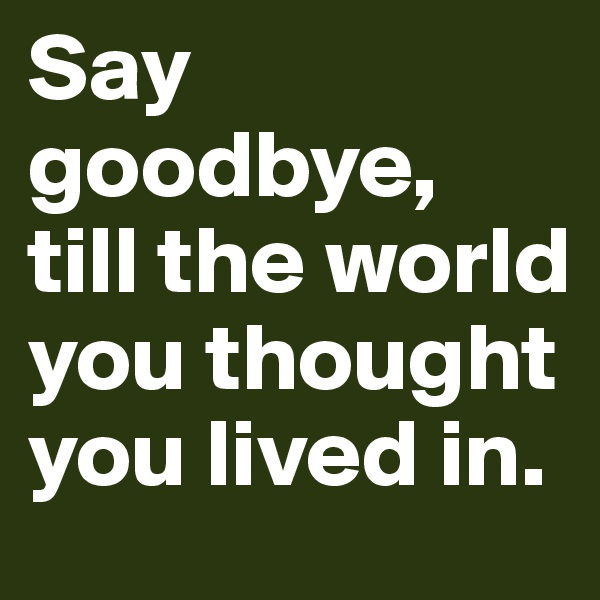 Say goodbye,  till the world you thought you lived in.