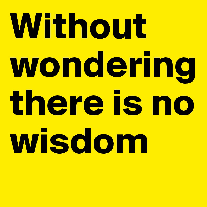 Without wondering there is no wisdom