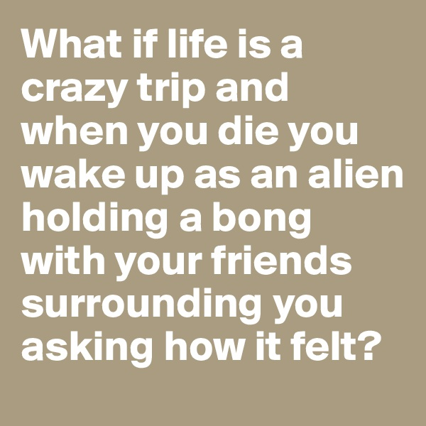 What if life is a crazy trip and when you die you wake up as an alien holding a bong with your friends surrounding you asking how it felt?