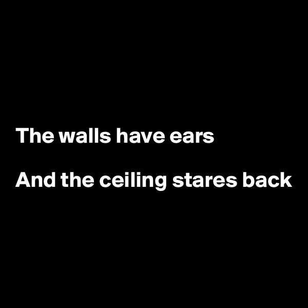 The walls have ears  And the ceiling stares back