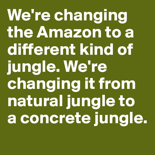 We're changing the Amazon to a different kind of jungle. We're changing it from natural jungle to a concrete jungle.