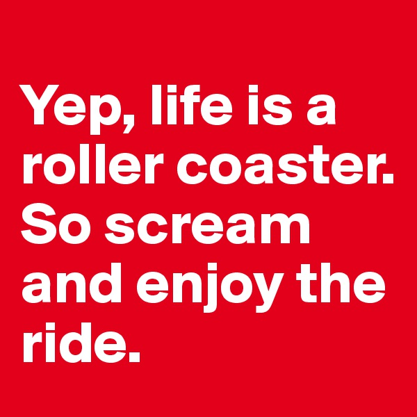 Yep, life is a roller coaster. So scream and enjoy the ride.