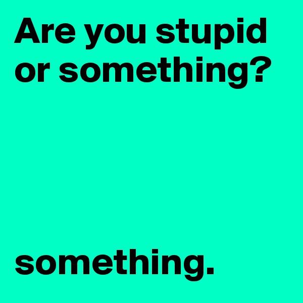 Are you stupid or something?     something.