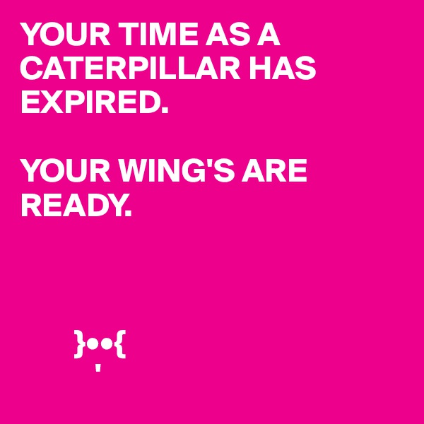 YOUR TIME AS A CATERPILLAR HAS EXPIRED.  YOUR WING'S ARE READY.            }••{            '