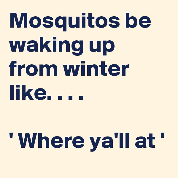 Mosquitos be waking up from winter like. . . .  ' Where ya'll at '