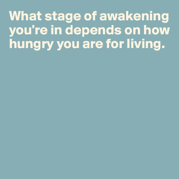 What stage of awakening you're in depends on how hungry you are for living.