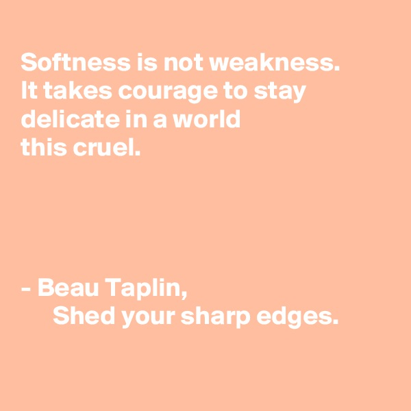 Softness is not weakness.  It takes courage to stay  delicate in a world  this cruel.      - Beau Taplin,                                            Shed your sharp edges.