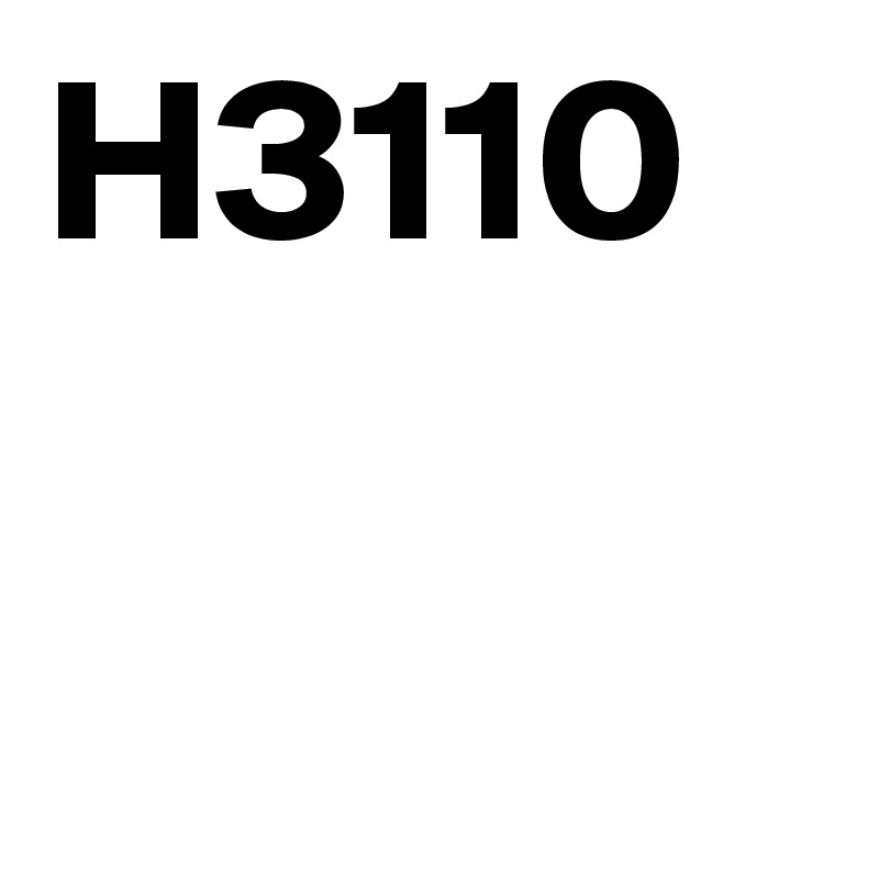 H3110