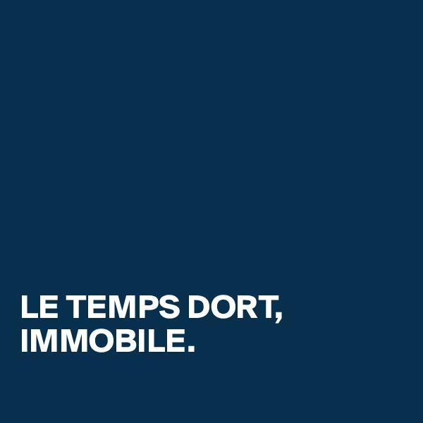 LE TEMPS DORT, IMMOBILE.