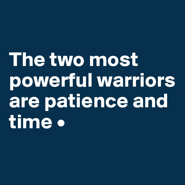 The two most powerful warriors are patience and time •
