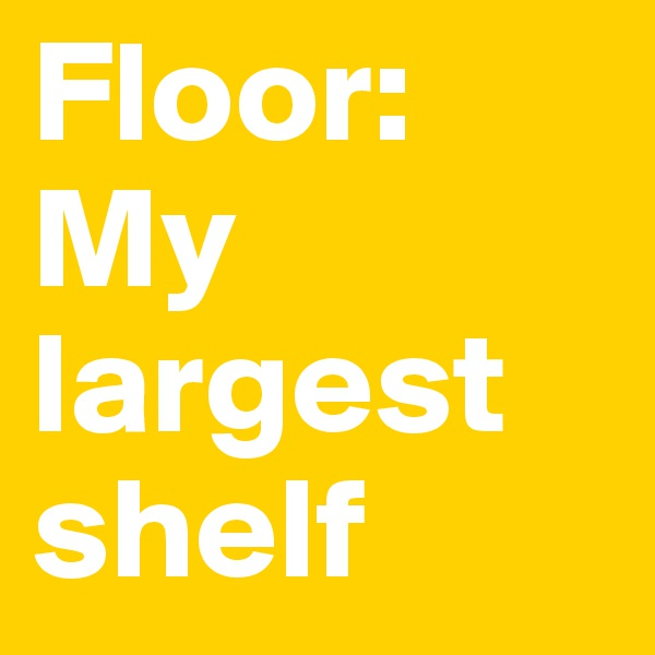 Floor:  My largest shelf