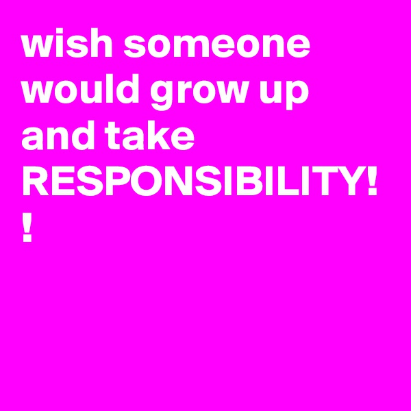 wish someone would grow up and take RESPONSIBILITY! !