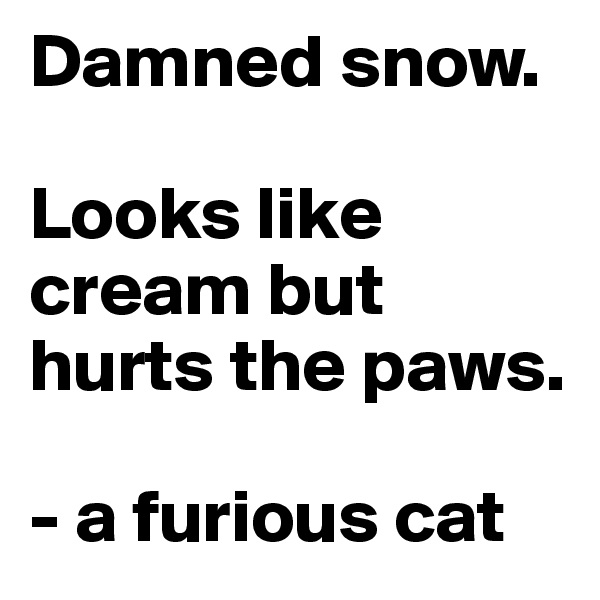 Damned snow.   Looks like cream but hurts the paws.   - a furious cat