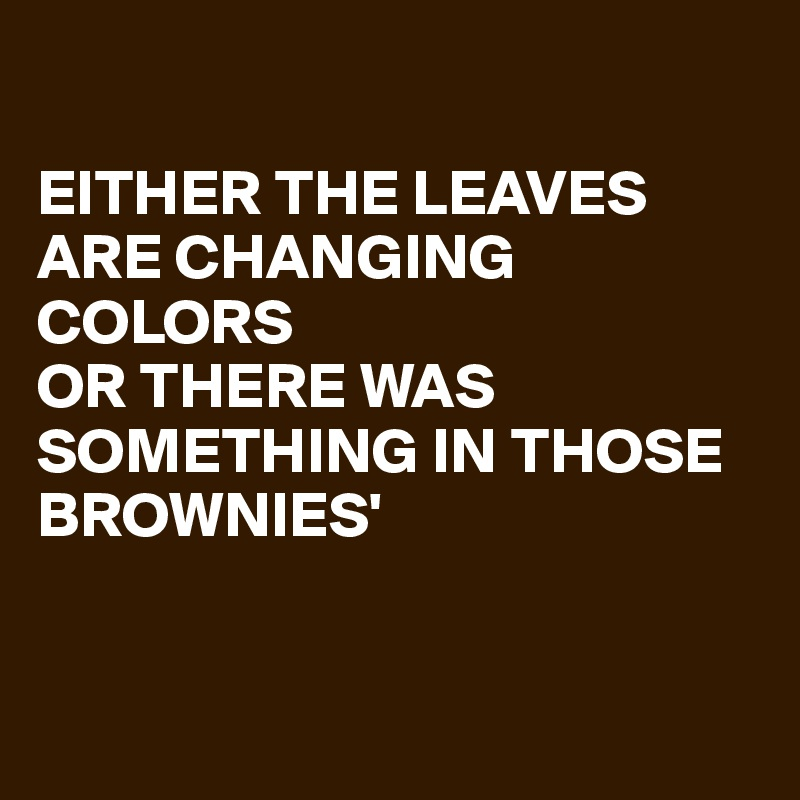EITHER THE LEAVES ARE CHANGING COLORS OR THERE WAS SOMETHING IN THOSE BROWNIES'