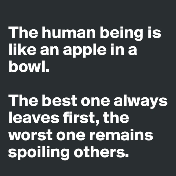 The human being is like an apple in a bowl.   The best one always leaves first, the worst one remains spoiling others.