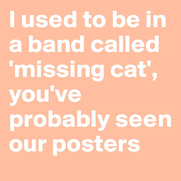 I used to be in a band called 'missing cat', you've probably seen our posters
