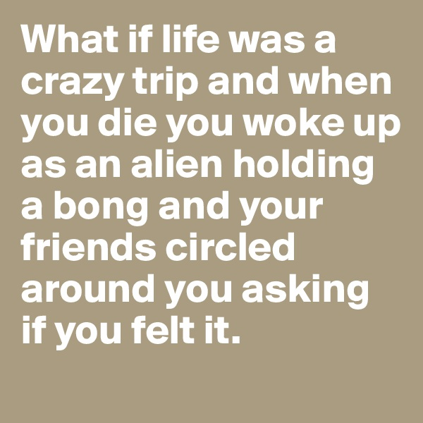 What if life was a crazy trip and when you die you woke up as an alien holding a bong and your friends circled around you asking if you felt it.