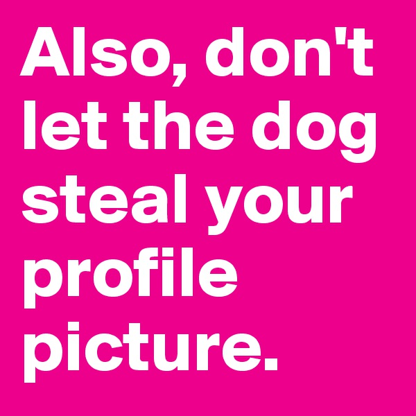 Also, don't let the dog steal your profile picture.