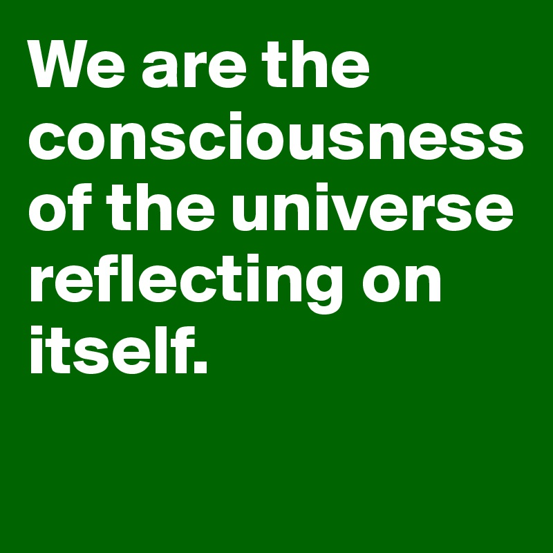 We are the consciousness of the universe reflecting on itself.